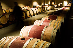 home/ferrer_bobet_winery_home_2.jpg